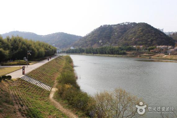 Taehwagang Grand Park  (Taman Megah Taehwagang)