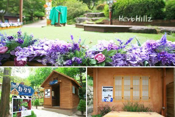 Herb Hillz di Daegu Metropolitan City