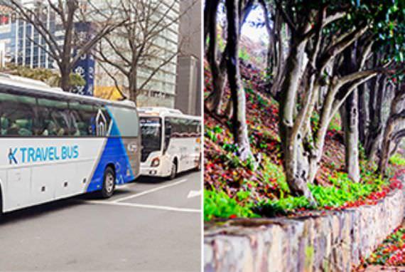 Temukan Pesona Korea yang Tersembungi dengan Bus K-Travel
