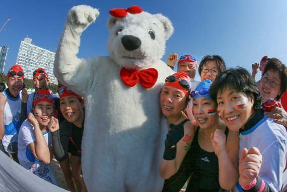 Kontes Renang Beruang Kutub (Polar Bear Swimming Contest)