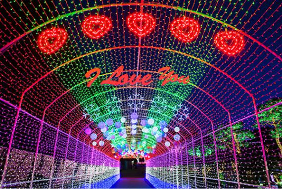 Festival Lampu di Starlight Village Photo Land Ansan