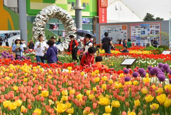 Hortikultura Internasional Goyang Korea