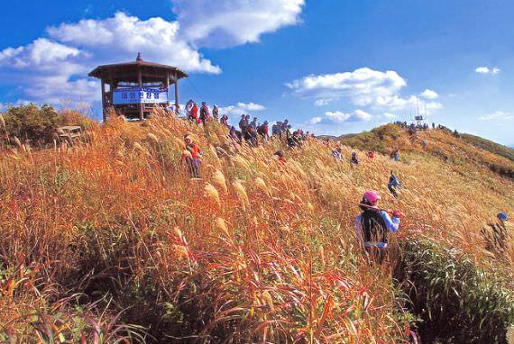 Gunung Oseo  di Hongseong, Chungcheongnam-do