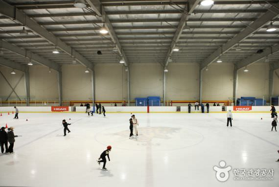 Arena Ice-Skating dalam Universitas Korea