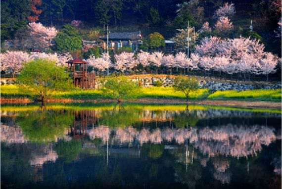 Taman Danau Seonam