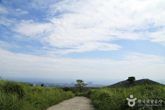 Zona Wisata Khusus Pulau Jeju