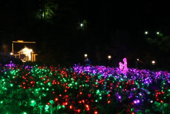 Festival Cahaya & Lampu Pulau Herb