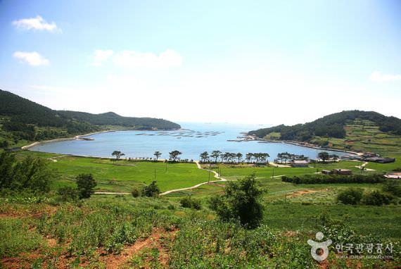 Pulau Cheongsando (Wando)