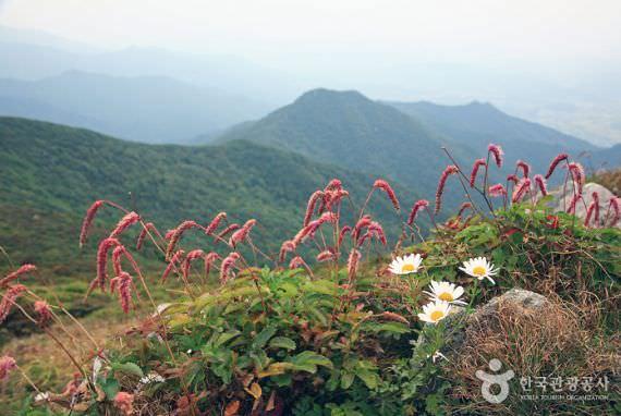 Taman Nasional Gunung Deogyusan (Namdeogyu)