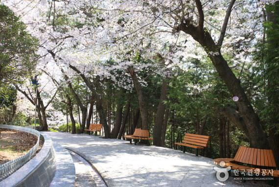 Taman Jehwangsan