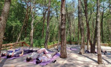 Busan Healing Forest