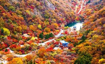 5 Situs Wisata Musim Gugur TERBAIK Korea